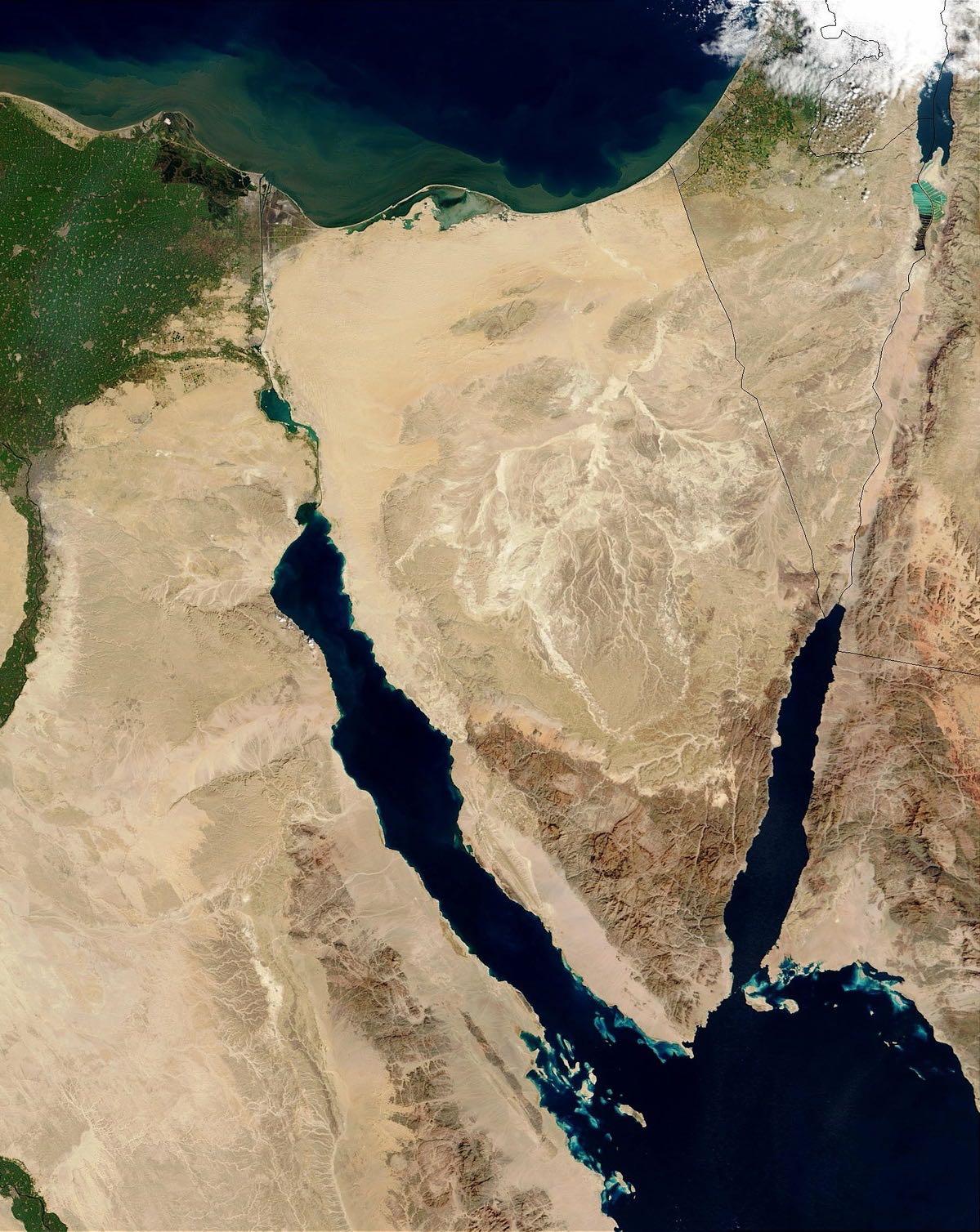 images/agenda_liberale/Beccaro_Egitto_finale