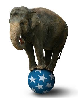 images/lettera_economica/elephant-1-cut
