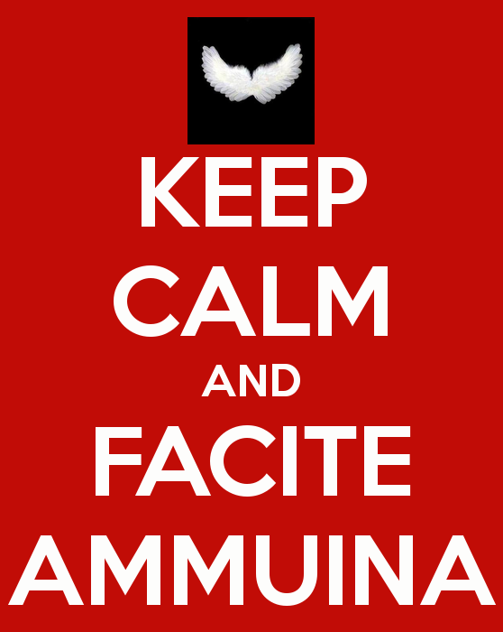 images/lettera_economica/keep-calm-and-facite-ammuina